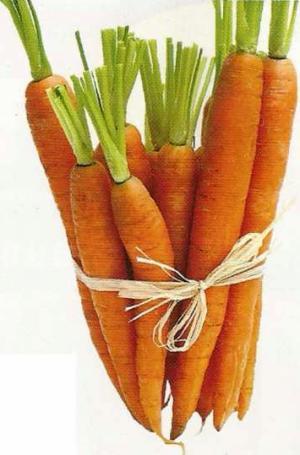 Морковь улучшает качество спермы