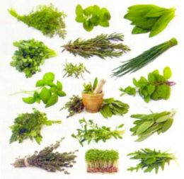 Зелень содержит много калия